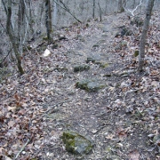 Oak Ridge Trail at Onondaga Cave State Park
